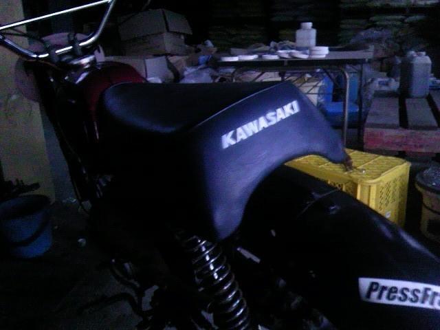 TS3Y1232.jpg
